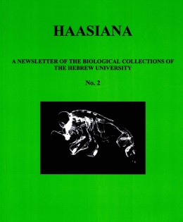 Haasiana no. 2, March 2004
