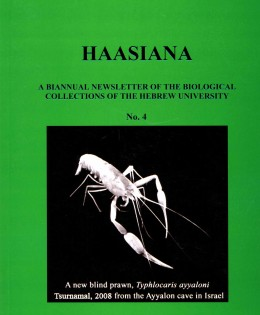 Haasiana no. 4, April 2008